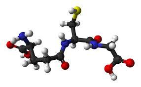 Detoxic - ราคาเท่าไร - อาหารเสริม - ราคา