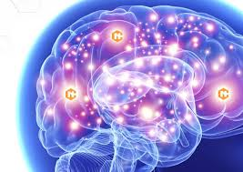 Neurocyclin - ปวดหัวและความจำดีขึ้น - pantip - พัน ทิป - ราคา