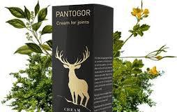 Pantogor - ข้อห้าม - รีวิว - พัน ทิป